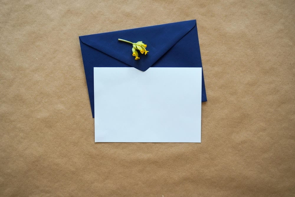 Write a thank you letter