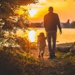Write a thank you letter to dad to show him your love